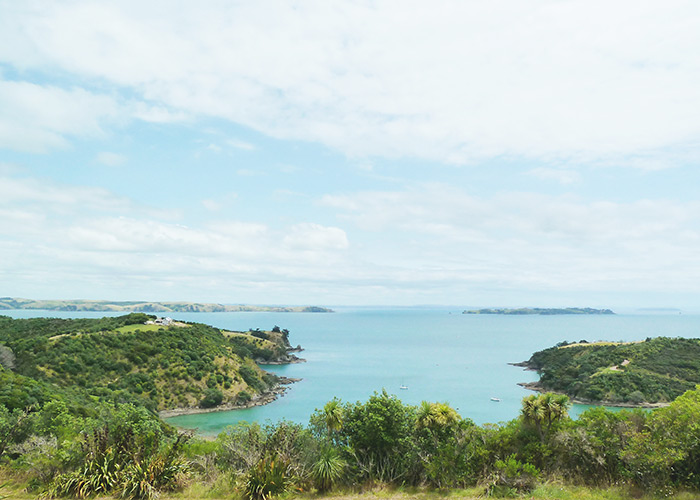 Retail: Waiheke Island, Regional 'Local + Global' Partnership